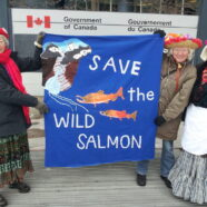 Save the Wild Salmon
